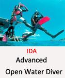IDA-AOWD