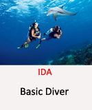 IDA-Basic-Diver
