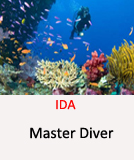 IDA-Master-Diver