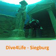 Tauchcenter-Wuppertal-Meeresauge-Dive4Life