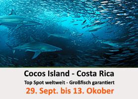 Tauchcenter-Wuppertal-Meeresauge-Gruppenreise-Cocos-Island-Costa-Rica