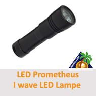 Tauchcenter-Wuppertal-Meeresauge-I-Wave-LED-Lampe