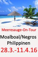 Tauchcenter-Wuppertal-Meeresauge-Moalboal-Cebu-Negros-Philippinen-Cover
