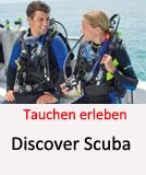 Tauchcenter-Wuppertal-Meeresauge-Schnuppertauchen-Discover_Scuba