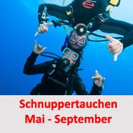 tauchcenter-wuppertal-meeresauge-schnuppertauchen-gruppenevent-firmenevent-1