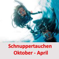 tauchcenter-wuppertal-meeresauge-schnuppertauchen-gruppenevent-firmenevent-2