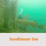 Tauchcenter-Wuppertal-Meeresauge-Sundhäuser-See