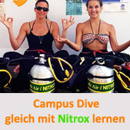 Tauchcenter-Wuppertal-Meeresauge-Tauchen-lernen-Beginner-IDA-CMAS-Advanced-Open-Water-Diver-Campus-Dive-nitrox