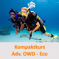 Tauchcenter-Wuppertal-Meeresauge-Tauchen-lernen-Beginner-IDA-CMAS-PADI-Advanced-Open-Water-Diver-Kompakt-eco
