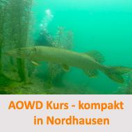 Tauchcenter-Wuppertal-Meeresauge-Tauchen-lernen-Beginner-IDA-CMAS-PADI-Kompaktkurs-AOWD-Nordhausen