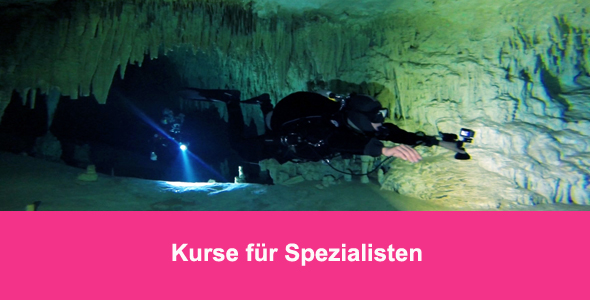 Tauchcenter-Wuppertal-Meeresauge-Tauchen-lernen-Beginner-IDA-CMAS-Spezialisten-Banner2