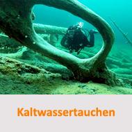 Tauchcenter-Wuppertal-Meeresauge-Tauchen-lernen-Beginner-IDA-CMAS-Spezialkurse-Kaltwassertauchen