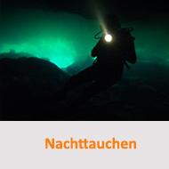 Nachttauchen am Fühlinger See @ Fühlinger See | Leverkusen | Nordrhein-Westfalen | Deutschland