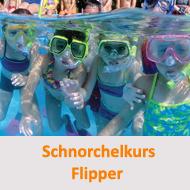 Tauchcenter-Wuppertal-Meeresauge-Tauchen-lernen-Beginner-Kids-Schnuppertauchen-Bubblemaker-Flipper