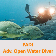 Tauchcenter-Wuppertal-Meeresauge-Tauchen-lernen-Beginner-PADI-Advanced-Open-Water-Diver