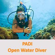 Tauchcenter-Wuppertal-Meeresauge-Tauchen-lernen-Beginner-PADI-Open-Water-Diver