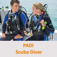 Tauchcenter-Wuppertal-Meeresauge-Tauchen-lernen-Beginner-PADI-Scuba-Diver