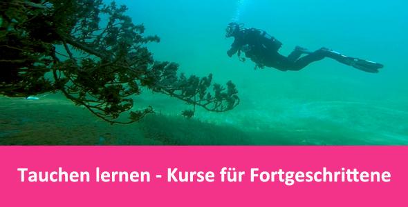 Tauchcenter-Wuppertal-Meeresauge-Tauchen-lernen-Fortgeschrittene-Banner