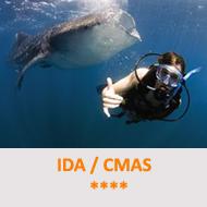 Tauchcenter-Wuppertal-Meeresauge-Tauchen-lernen-Fortgeschrittene-IDA-CMAS-4Sterne