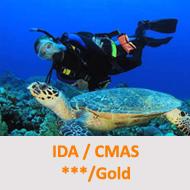Tauchcenter-Wuppertal-Meeresauge-Tauchen-lernen-Fortgeschrittene-IDA-CMAS-Gold