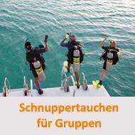 Tauchcenter-Wuppertal-Meeresauge-Tauchen-lernen-Schnuppertauchen-für-Gruppen