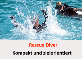 Rescue Diver  - Tauchsicherheit und Rettung - Theorie - Online Workshop @ TEAM Meeting Schulungsraum Online