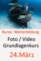 Tauchcenter-Wuppertal-Meeresauge-Tauchkurse-Fotokurs