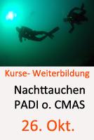 Tauchcenter-Wuppertal-Meeresauge-Tauchkurse-Nachttauchen