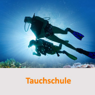 Tauchcenter-Wuppertal-Meeresauge-Tauchschule-Tauchen-lernen