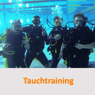 Tauchcenter-Wuppertal-Meeresauge-Tauchtraining