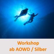 Tauchcenter-Wuppertal-Meeresauge-Workshop-Hinweis-AOWD-und-Silber