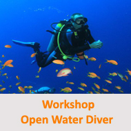 Tauchcenter-Wuppertal-Meeresauge-Workshop-Hinweis-Open_Water_Diver