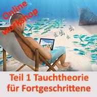 Online Workshop für Fortgeschrittene ab AOWD geeignet @ Online Workshop - E Learning | Wuppertal | Nordrhein-Westfalen | Deutschland