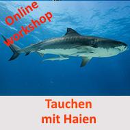 Sharks - Tauchen mit Haien - ein workshop @ Online Workshop - E Learning