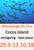 Tauchcenter-Wuppertal-Meeresauge-Wrack-Cocos-island