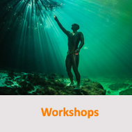 Tauchcenter-Wuppertal-Meeresauge-workshops