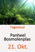 Tauchcenter-Wuppertal-Tauchen-Bosmolenplas-Panheel