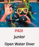 Tauchcenter-Wuppertal_Meeresauge-Open Water Diver-junior-PADI