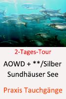 Sundhäuser See - Möwensee @ Sundhäuser See | Nordhausen | Thüringen | Deutschland
