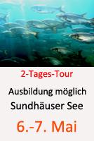 Tauchcenter-Wuppertal_Meeresauge-Tagestour-Nordhausen-Sundhäuser-See