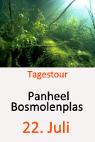 Tauchcenter-Wuppertal_Meeresauge-Tagestour-Panheel