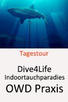 Indoortauchparadies Dive4Life - Open Water Diver Ausbildung @ Dive4Life | Siegburg | Nordrhein-Westfalen | Deutschland