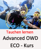 Tauchcenter-Wuppertal_Meeresauge-Tauchen_lernen-Advanced-ECO