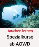 Tauchcenter-Wuppertal_Meeresauge-Tauchen_lernen-Spezialkurse-002