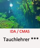 Tauchcenter-Wuppertal_Meeresauge-Tauchlehrer_werden-TL3