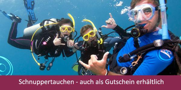 Tauchcenter_Wuppertal-Meeresauge-Schnuppertauchen-Discover-Scuba