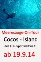 Tauchcenter_Wuppertal-Meeresauge-Tauchreise-Gotland-Cocos-Island-2014