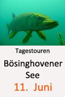 Tauchcenter_Wuppertal-Workshop-Tauchen_Tagestour_Bösinghovener-See-3