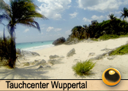 Tauchcenter_Wuppertal_Meeresauge_Tauchreisen_Mexiko-2015-004