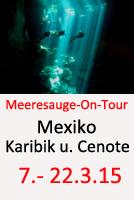 Tauchcenter_Wuppertal_Meeresauge_Tauchreisen_Mexiko-2015